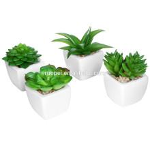 Mini potted factory sale various artificial plastic succulent plant for decor