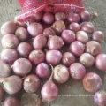 Exportação Standard Qualidade de Fresh Red Onion 5-7cm
