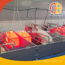 Poultry Farm Farrowing Crate For Pig