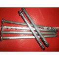 Common Nail/ Common Wire Nail/Common Iron Nails