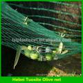 China Supply 100% HDPE olive harvest net/olive net for agriculture (32g-150g olive net )