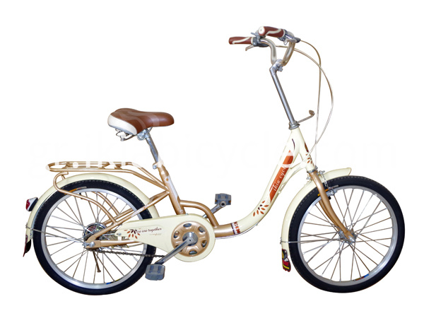 lady bike with steel frame