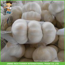 De alta calidad de ajo blanco fresco 5.0CM bolso de malla en el buen precio de cartón Jinxiang chino