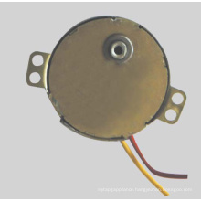 Synchronous Motor (49TDY -B)