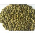 Hulled pumpkin seeds para la venta