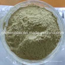 Fat Burning Ephedra Herb Powder