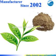 O GMP certificou o extrato orgânico do chá verde de 100% natural, polifenol do chá com o melhor preço