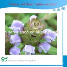 Pflanze Diuretic Selfheal Herb Extrakt