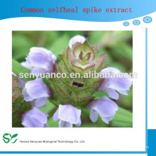 Natural High Quality Common Selfheal Fruit-Spike Extract