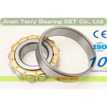 The High Speed Low Noise Cylindrical Roller Bearing (NJ2317EM)