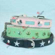 O mais novo colar de couro do animal de estimação para cães e gatos (P-16)