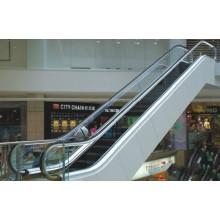 Residential Economical Indoor Types Vvvf Escalator by Huzhou Manufacturer