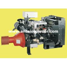 Lovol Engine para estacionario (1004-4TZ)