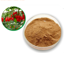 2017 Organic Delicacy Goji Berry Extract Powder