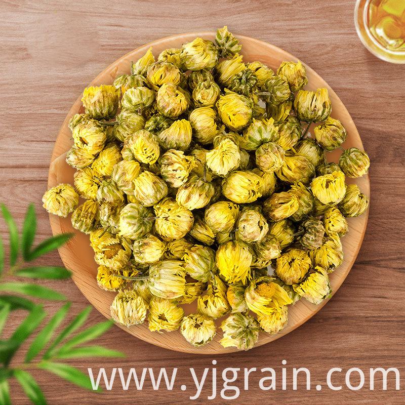 Fetal chrysanthemum