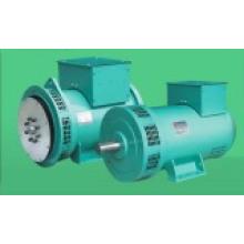 Leroy Somer Brushless Alternator (LTG)