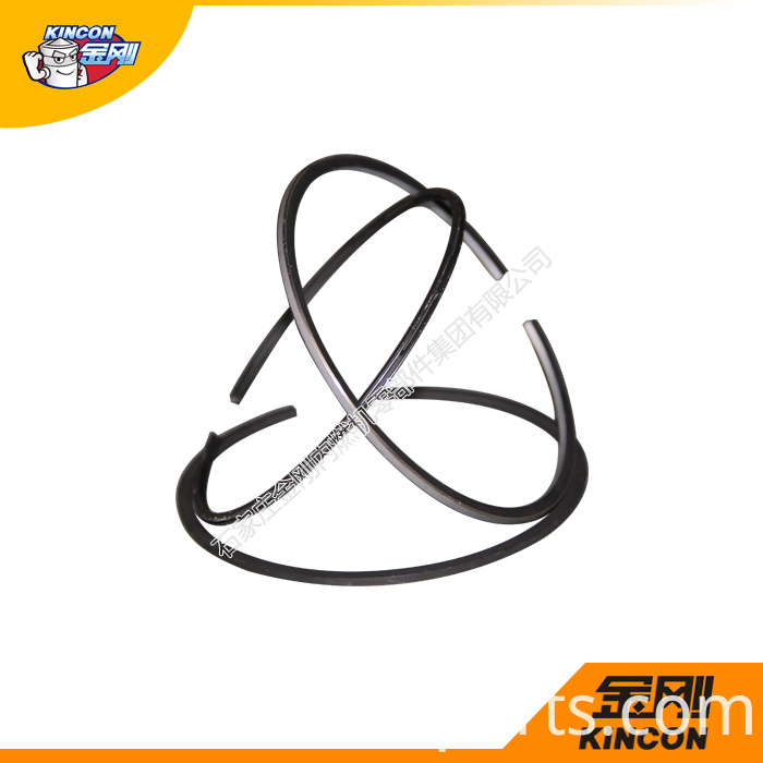 Piston Ring Assembly