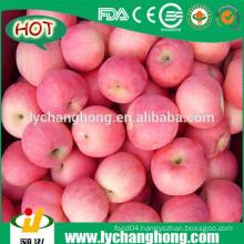 Chinese Fuji Apple