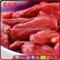 Wo kaufen Bio Goji Beeren Bio Goji Beeren Amazonas Navitas Naturals Bio Goji Beeren