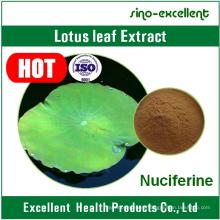 100% Natural Nuciferine 2% Lotus Leaf Powder