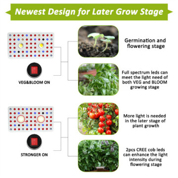 Best Cree COB Grow Lights