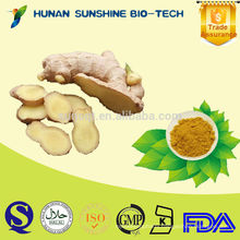 Gingerols/Used For Confecting Essence/Herbal Extract Ginger Root Extract