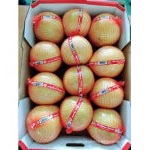 Fresh Fruit Organic Honey Pomelo High Quality From China