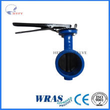 Indoor and outdoor can be used 304 stainless steel toilet flush valve