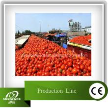 Линия по производству томатов Химическое оборудование