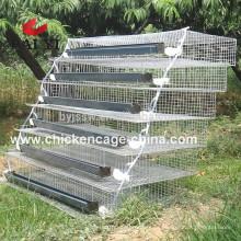 Baterias de codornas de bateria para codornas de codornas e frangos de asa de ovos