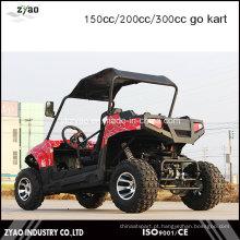 Corrida barata Go Kart para venda 200cc água refrigerada Zyao