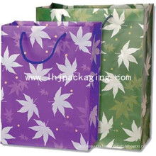 High Quality Silk Screen Sliver Paper Bag with Handle