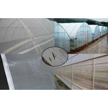 Malla de insectos para agricultura / Malla de malla para jardín