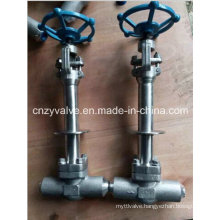 Avc Cryogenic Lcb Gate Valve and Forged Steel Gate Valve