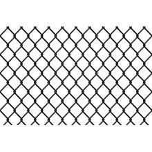 PVC-beschichteter Kettenglied-Zaun in hoher Qualität
