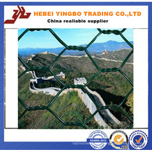 ISO9001 Certificate Manufacturer Rust Proof Hexagonal Wire Mesh