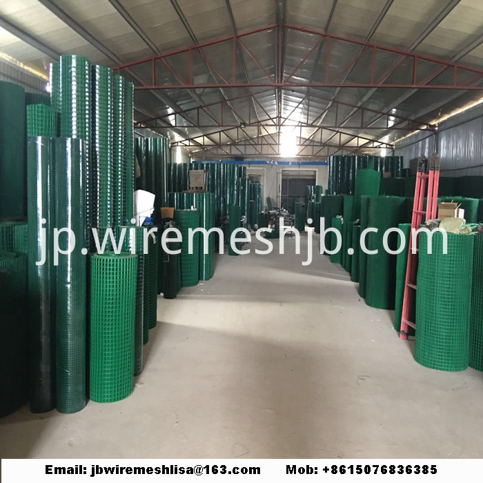 PVC Coated Welded Wire Mesh Roll