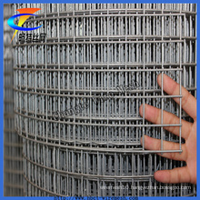 ISO9001 Anping Facotry Galvanized Welded Wire Mesh