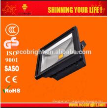 LEDs 30w
