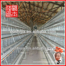 chicken egg layer cages(manufactory)