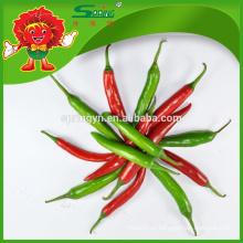 2015 Hotsale Verde chile