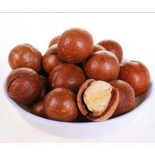 Macadamia nut in shell, wholesale macadamia nuts