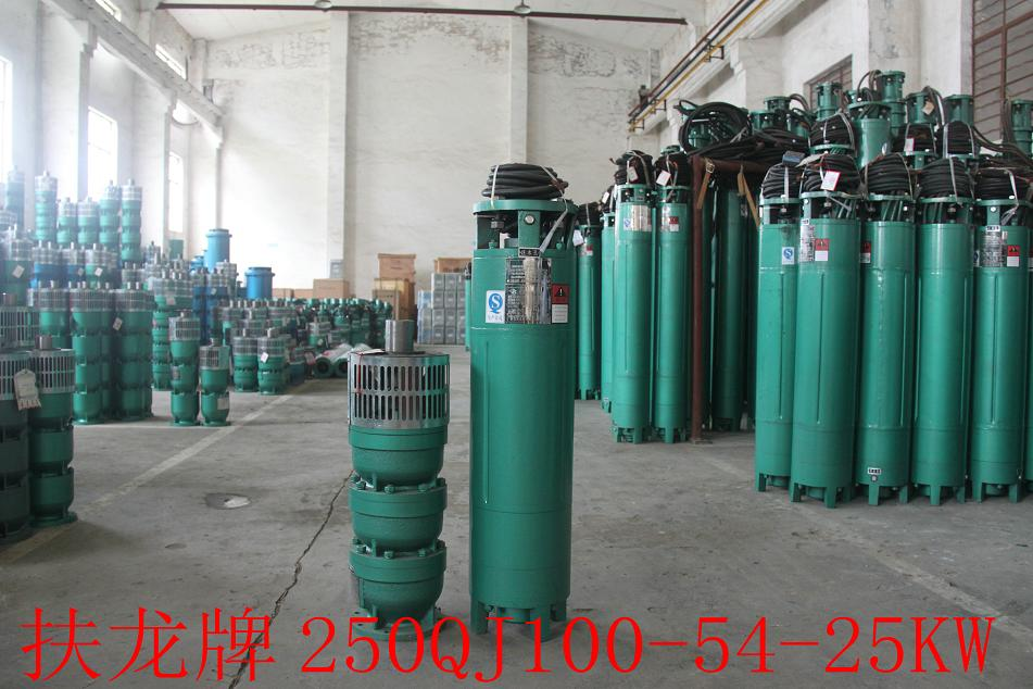 250QJ Water Pump