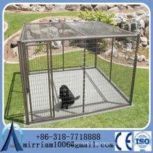 Estándar Gran galvanizado al aire libre de mascotas cadena de mascotas recinto / perro perreras y jaula de perro y perro corre