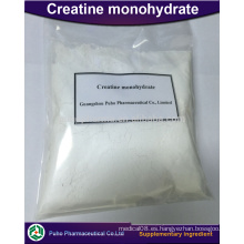 Polvo de creatina monohidrato con buen precio