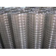 Mesh métallisé soudé galvanisé de 3/8 po à 200 mm en rouleau