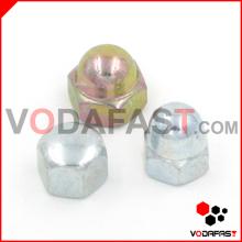 Aço Hex Domed Cap Nuts