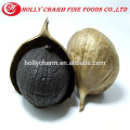 2016 Hot Sale Product solo black garlic