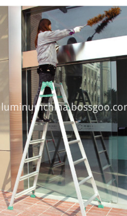 A type ladder use