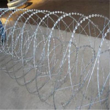 BTO-22 galvanized concertina shazer safety wire fencing